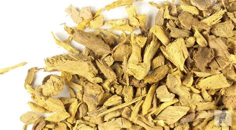 Barberry Information and Barberry Herbal Remedies