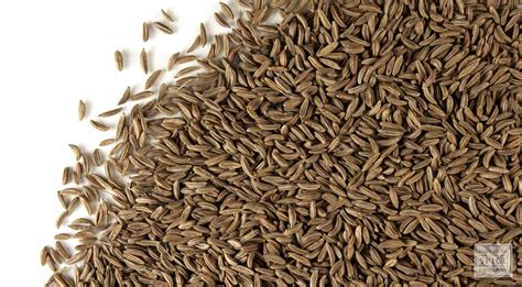 Caraway Seed Information and Caraway Seed Properties