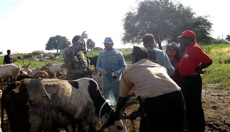 Indian peacekeepers provide much-needed livelihood support